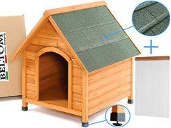 Sala Parto Per Cani : Cassa parto cani in vendita e in regalo kijiji annunci di ebay