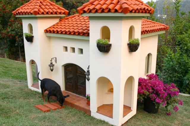 Decorare il giardino con la cuccia da esterno del vostro cane for Costruire cuccia per cani