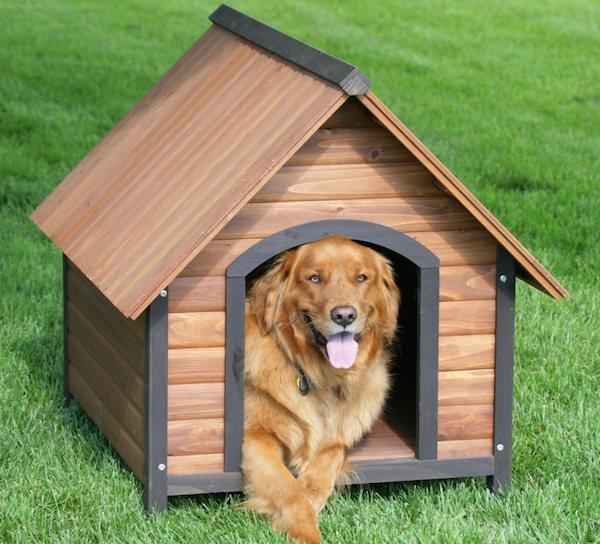 Cucce per cani fai da te o cucce in hpl for Costruire cuccia per cani